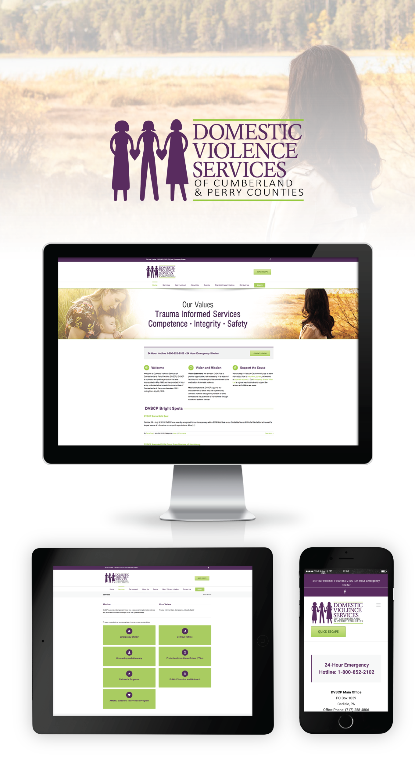 Domestic Violence Services Portfolio