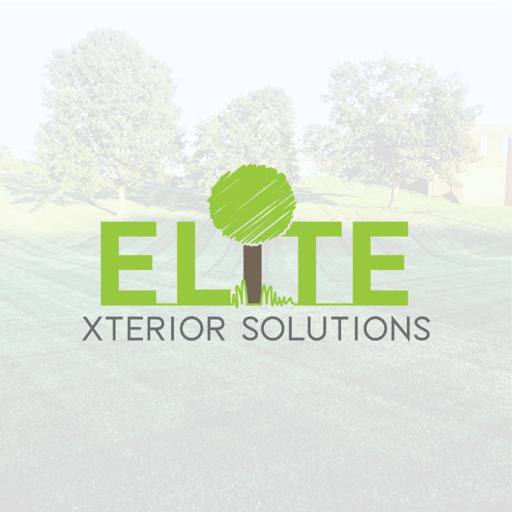 Elite Xterior Solutions Logo