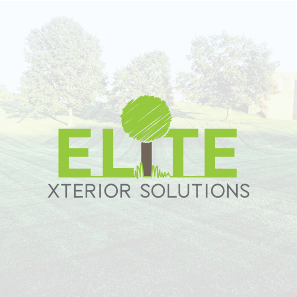 Elite Xterior Solutions Logo
